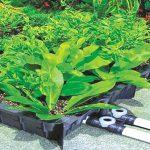 công nghệ trồng cây trên tường VGM