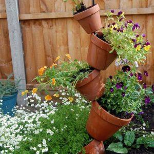 mẫu vườn thẳng đứng