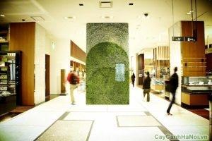 thiết kế vườn tường phong cách Nhật