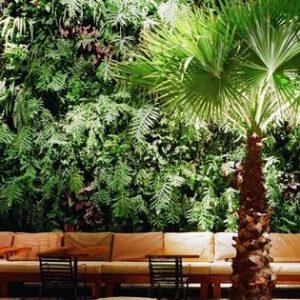 Vai trò của vườn treo tường đối với môi trường trong nhà?