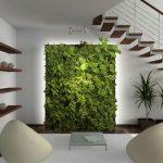 vườn tường chung cư