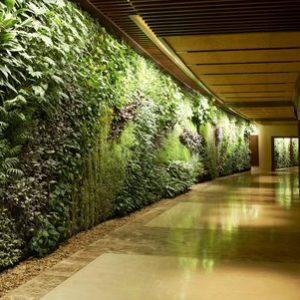 vườn tường resort