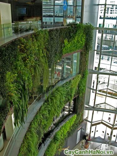 vườn tường trung tâm thương mại