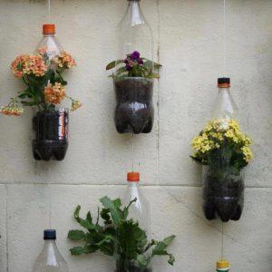 cách làm vườn thẳng đứng đơn giản