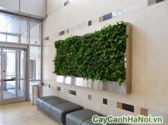 tranh treo tường bằng cây
