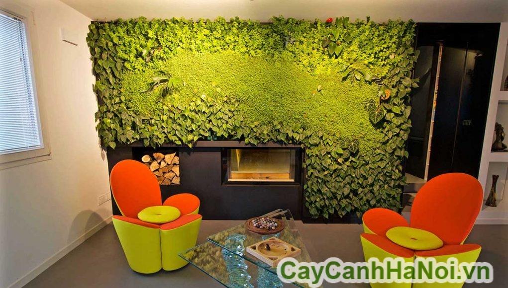 tường xanh giải nhiệt mùa hè